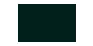 logo_hammerschmid-slider.png
